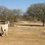 December at the Mayan Dude Ranch
