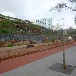 bike lane in construction,vegetable plots estrada monumental