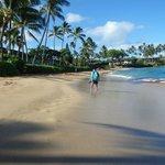 Napili bay beach