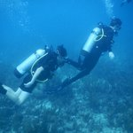 Hamanasi Family Dive Adventure