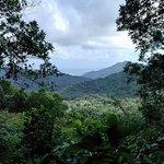 Morne Trois Piton National Park