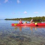 3h kayak tour