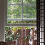 Leafy outlook from apartment