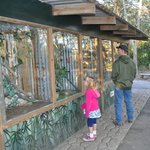 snake exhibits had nice low windows so the littles could see in without help
