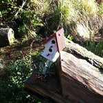 It's in the details.... lovely birdhouses adorn the grounds.