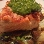 Superb Scottish Salmon