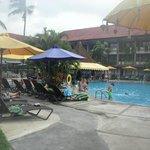 Main Pool & Pool Bar