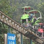 Chongqing Zoo's Funfair