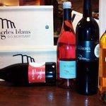 La primera cata-maridaje de este año 2014, con Bodega CINGLES BLAUS, D.O Montsant. Buenos vinos,