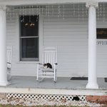 front porch and friendly kitties