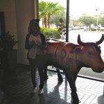 Hotel Derek cow