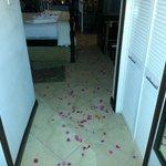 flower petals everywhere!