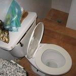 Broken toilet at LEGENDS