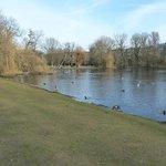 il lago di vondelpark