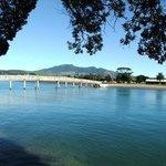 Raglan Harbour foot bridge