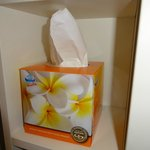 cosmetic wipes are ensured in bathroom