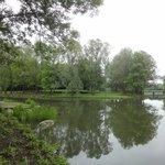 Típico lugar del parque, con abundantes lagunas y árboles!