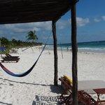 hammock and beach chairs