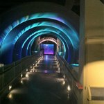 Cool Tunnel
