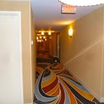 Long hallway with nice carpet