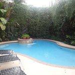 Pool & lush landscaping!