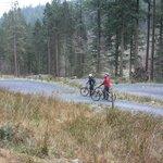 mountain biking at coed y brenin