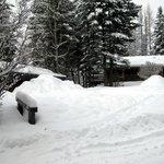 plenty of fresh snow