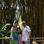 Foto familiar bambu