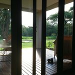 looking out onto porch/lanai
