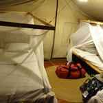 Tented room with nets all around to save you from the bugs