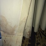 Vomit/wine-stained curtains