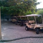 Our golf carts lined up on the alley in front of the hotel.