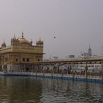 Golden temple-1