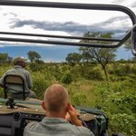 Game Drive, with open Vehicles, Ranger and Tracker