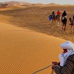 Merzouga desert Guide
