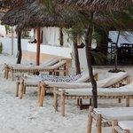 Sunchairs at the beachfront