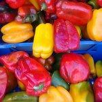 Si mangia fra i colori e i profumi della frutta e della verdura