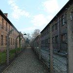 Corredor de arame farpado entre os pavilhões do campo de extermínio de Auschwitz, Polônia.