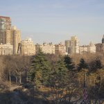the view from a central park view room