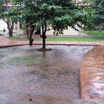 jour de pluie (intense)