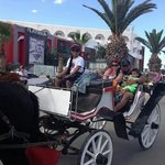 Horse n carriage