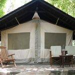 Tent s
