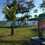 the view of the Bay of Chiriqui from Bocas del Mar