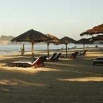 Beach area (89687460)