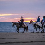 Virginia Beach | Outer Banks (OBX) Horseback