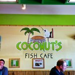 Coconuts is the name of the feline mascot….go, go, go,…eat, eat, eat.