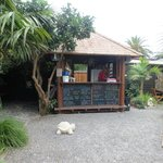 The Secret Garden Coffee shop