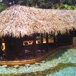 hot springs swim up bar