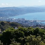 Looking back on Wellington and the Voyager of the Seas