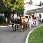Horse Drawn Carriage at the Crown Mansion